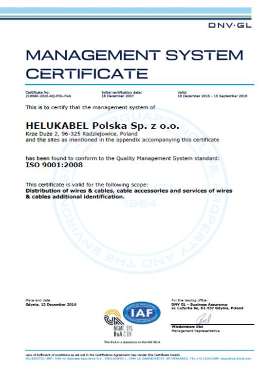 ISO 9001:2000 (ang.)